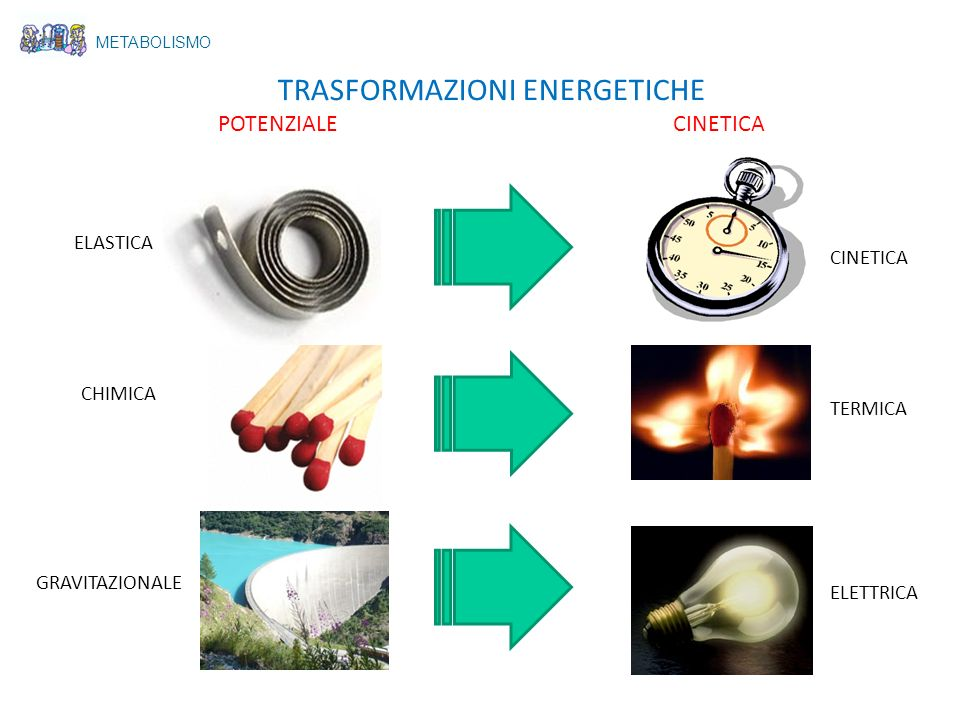 METABOLISMO TRASFORMAZIONI ENERGETICHE POTENZIALE CINETICA ELASTICA CHIMICA GRAVITAZIONALE CINETICA TERMICA ELETTRICA