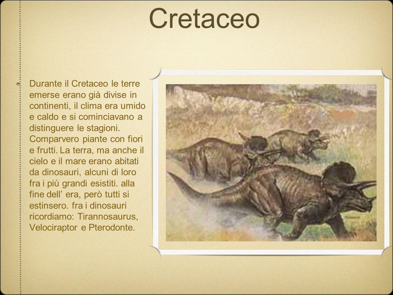 Cretaceo Durante il Cretaceo le terre emerse erano già divise in continenti, il clima era umido e caldo e si cominciavano a distinguere le stagioni. C