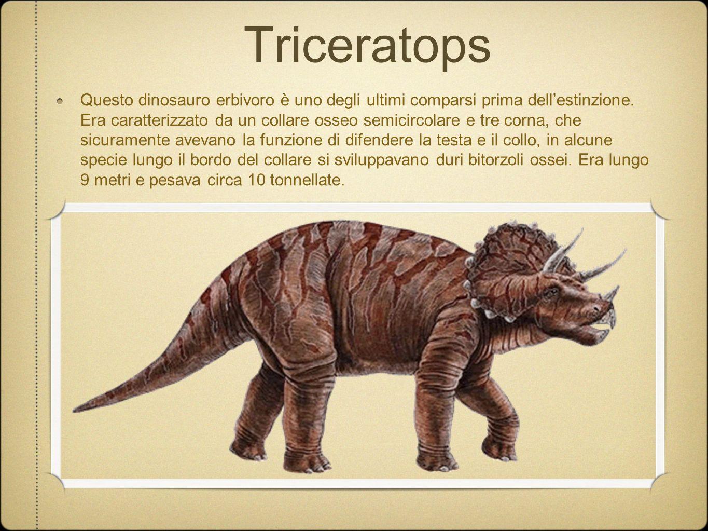Triceratops Questo dinosauro erbivoro è uno degli ultimi comparsi prima dellestinzione. Era caratterizzato da un collare osseo semicircolare e tre cor