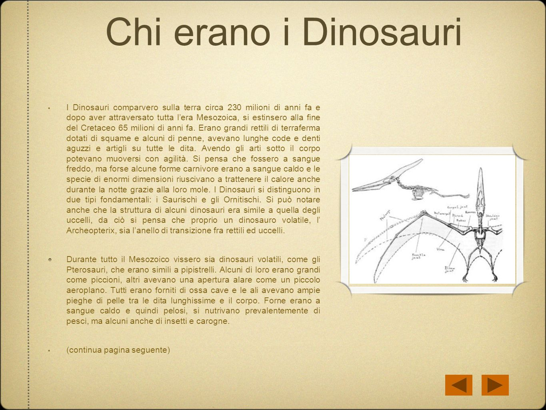 Chi erano i Dinosauri I Dinosauri comparvero sulla terra circa 230 milioni di anni fa e dopo aver attraversato tutta lera Mesozoica, si estinsero alla
