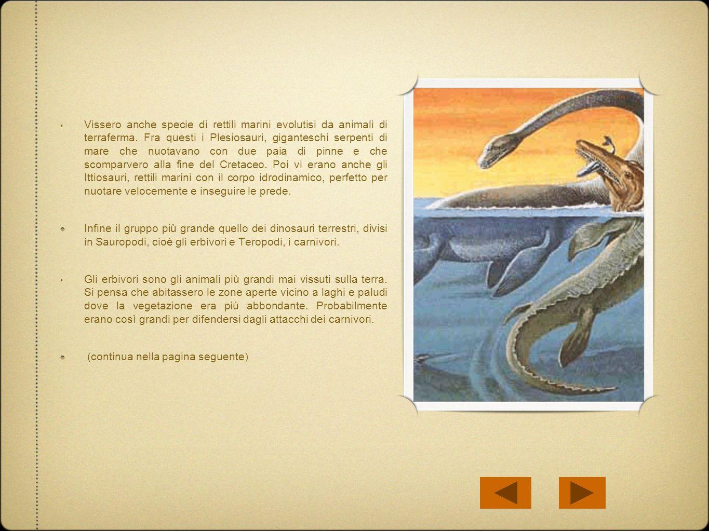 Vissero anche specie di rettili marini evolutisi da animali di terraferma. Fra questi i Plesiosauri, giganteschi serpenti di mare che nuotavano con du