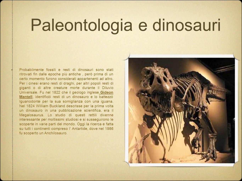 Paleontologia e dinosauri Probabilmente fossili e resti di dinosauri sono stati ritrovati fin dalle epoche più antiche, però prima di un certo momento
