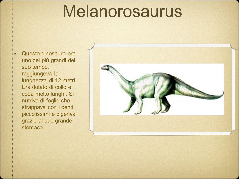 Melanorosaurus Questo dinosauro era uno dei più grandi del suo tempo, raggiungeva la lunghezza di 12 metri. Era dotato di collo e coda molto lunghi. S