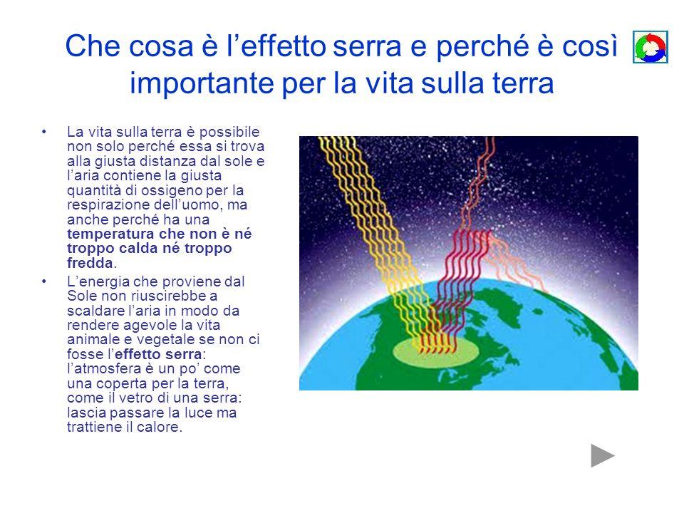 Che cosa è leffetto serra e perché è così importante per la vita sulla terra La vita sulla terra è possibile non solo perché essa si trova alla giusta