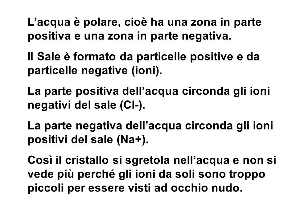 Lacqua è polare, cioè ha una zona in parte positiva e una zona in parte negativa. Il Sale è formato da particelle positive e da particelle negative (i