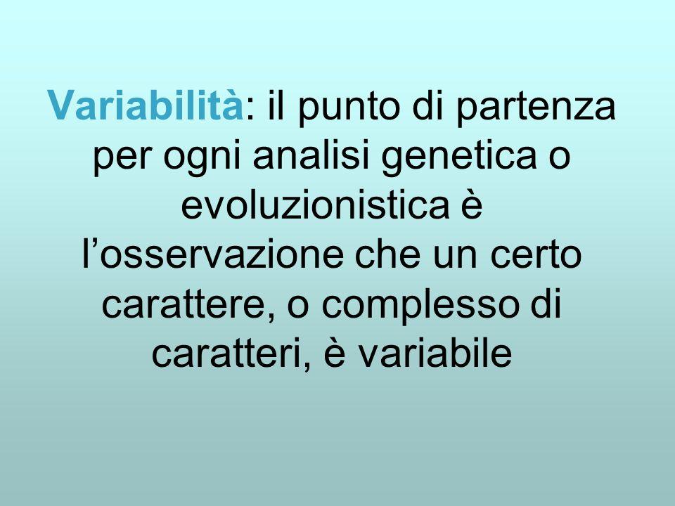 Variabilità: il punto di partenza per ogni analisi genetica o evoluzionistica è losservazione che un certo carattere, o complesso di caratteri, è vari