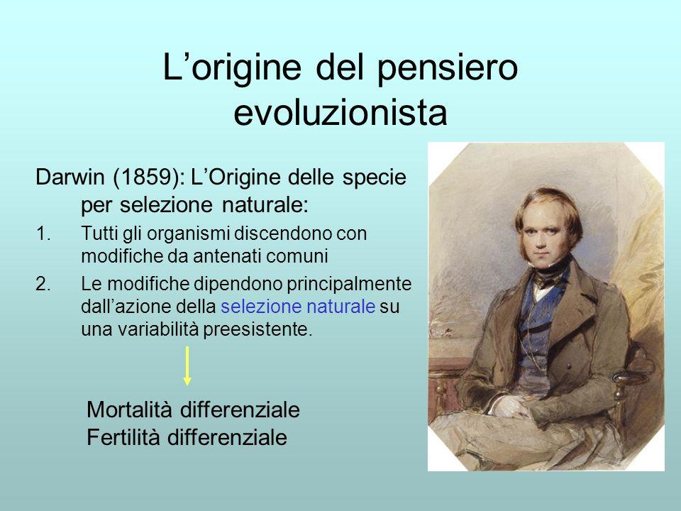 Lorigine del pensiero evoluzionista Darwin (1859): LOrigine delle specie per selezione naturale: 1.Tutti gli organismi discendono con modifiche da antenati comuni 2.Le modifiche dipendono principalmente dallazione della selezione naturale su una variabilità preesistente.