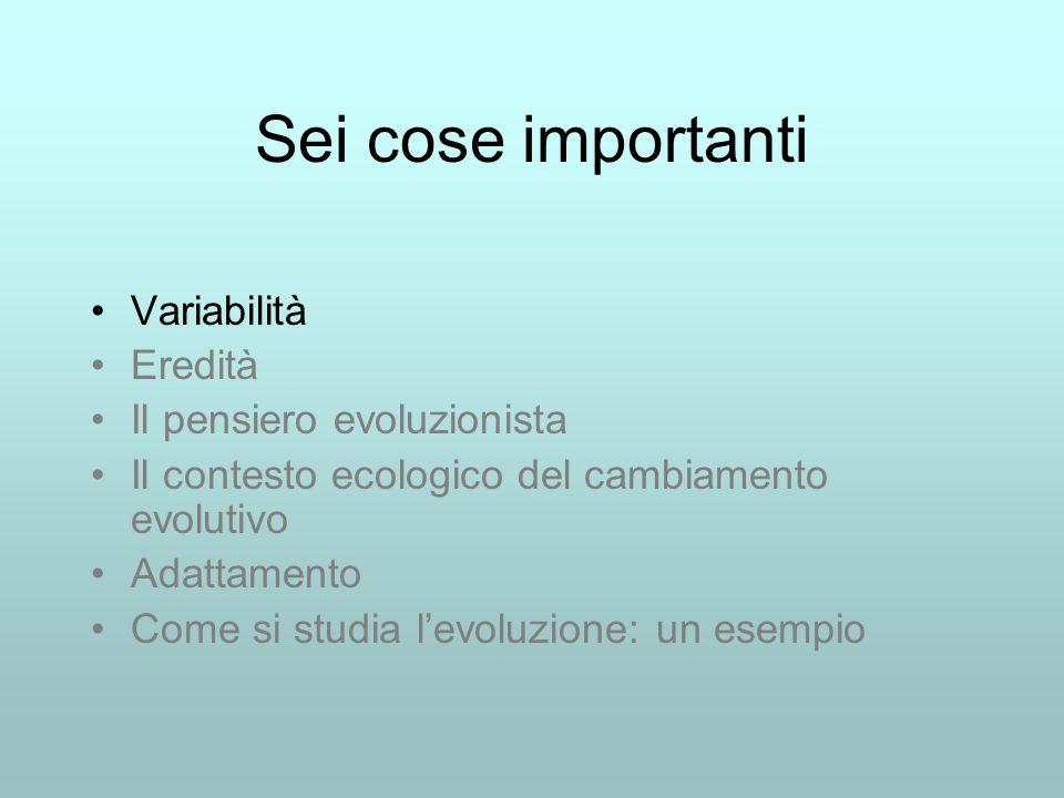 Sei cose importanti Variabilità Eredità Il pensiero evoluzionista Il contesto ecologico del cambiamento evolutivo Adattamento Come si studia levoluzio