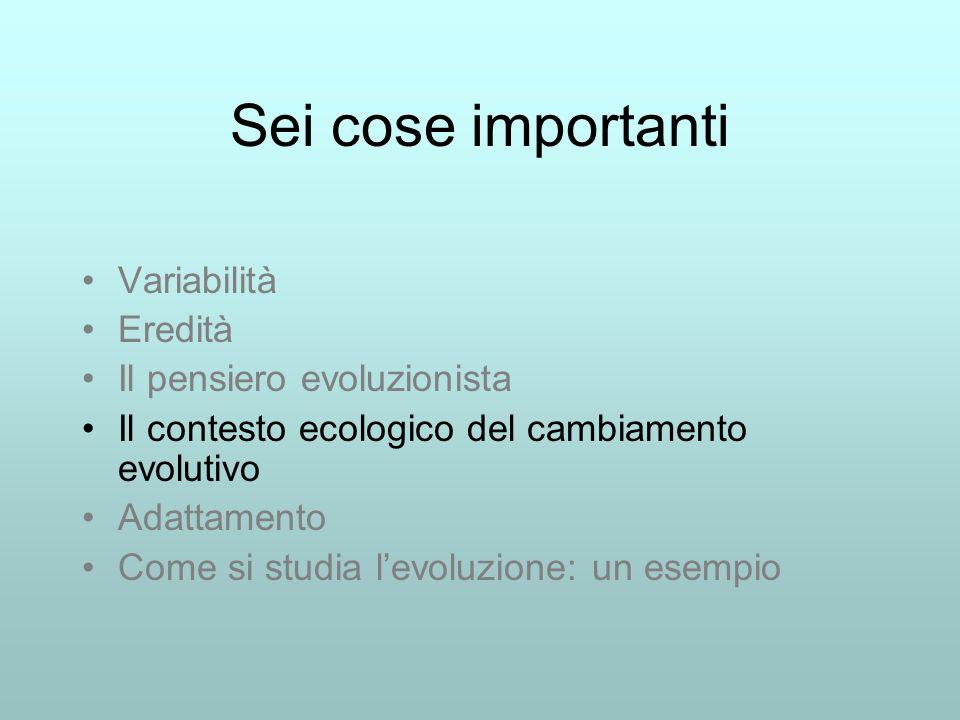 Sei cose importanti Variabilità Eredità Il pensiero evoluzionista Il contesto ecologico del cambiamento evolutivo Adattamento Come si studia levoluzione: un esempio