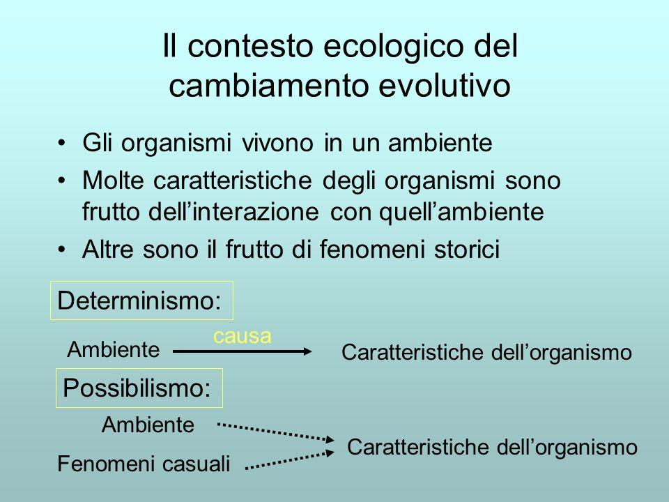 Il contesto ecologico del cambiamento evolutivo Gli organismi vivono in un ambiente Molte caratteristiche degli organismi sono frutto dellinterazione