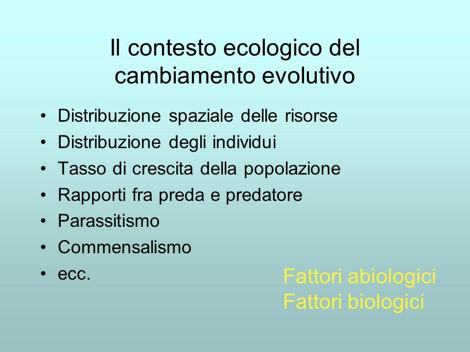 Il contesto ecologico del cambiamento evolutivo Distribuzione spaziale delle risorse Distribuzione degli individui Tasso di crescita della popolazione