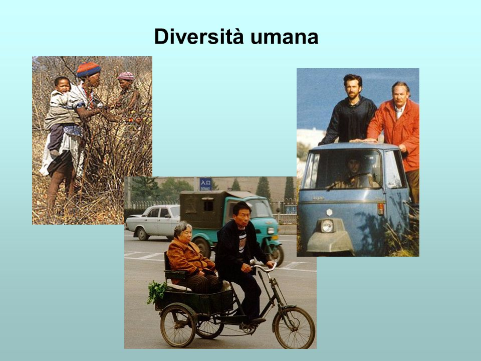 Biodiversità e attività umane