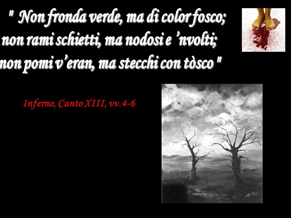 Dante nota come si sentano lamenti ovunque senza vedere nessuno, al che pensa che ci siano delle anime nascoste tra la boscaglia.