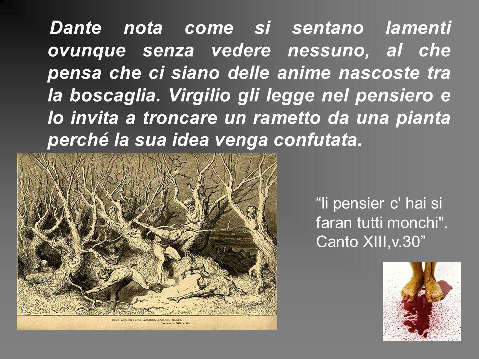 Dante nota come si sentano lamenti ovunque senza vedere nessuno, al che pensa che ci siano delle anime nascoste tra la boscaglia. Virgilio gli legge n