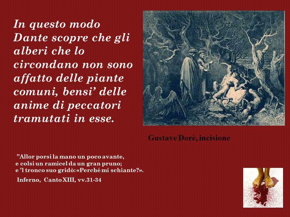 In questo modo Dante scopre che gli alberi che lo circondano non sono affatto delle piante comuni, bensi delle anime di peccatori tramutati in esse. A