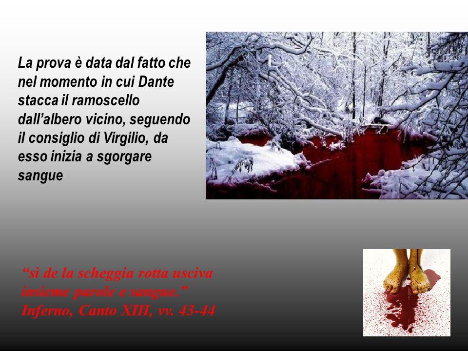 La prova è data dal fatto che nel momento in cui Dante stacca il ramoscello dallalbero vicino, seguendo il consiglio di Virgilio, da esso inizia a sgo