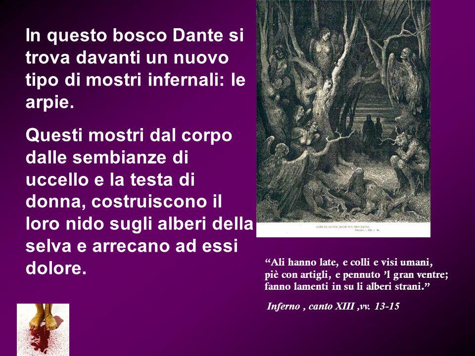 In questo bosco Dante si trova davanti un nuovo tipo di mostri infernali: le arpie. Questi mostri dal corpo dalle sembianze di uccello e la testa di d