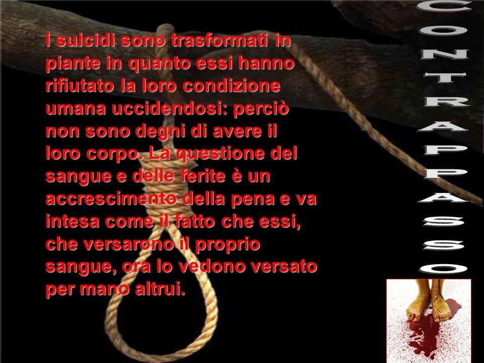 La storia di Pier delle Vigne, personaggio che Dante incontra tra i suicidi, è una di quelle più drammatiche fra quelle raccontate nella Commedia.Dante stesso rimane a tal punto impietosito di questo dannato che non riesce a porgli domande.
