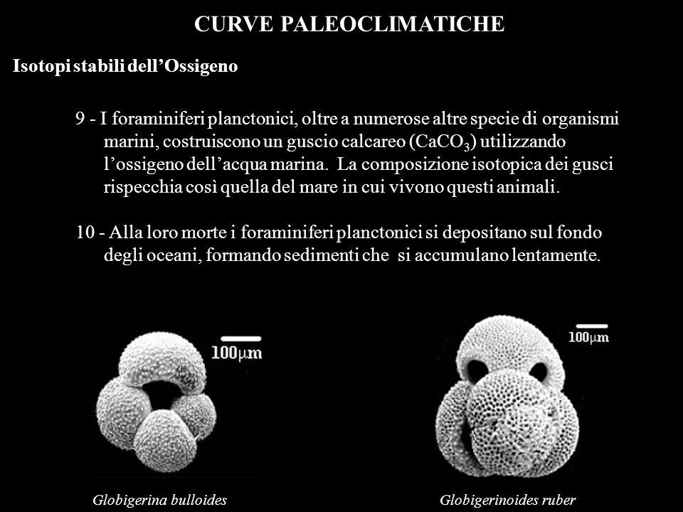 CURVE PALEOCLIMATICHE Isotopi stabili dellOssigeno 9 - I foraminiferi planctonici, oltre a numerose altre specie di organismi marini, costruiscono un