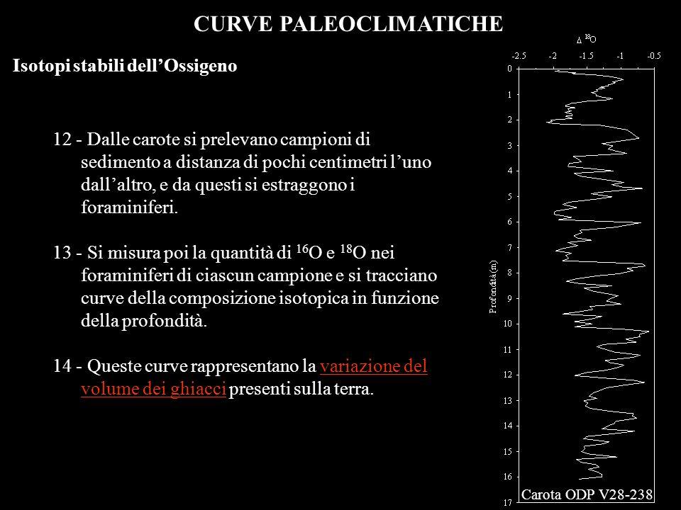 CURVE PALEOCLIMATICHE Isotopi stabili dellOssigeno 12 - Dalle carote si prelevano campioni di sedimento a distanza di pochi centimetri luno dallaltro,