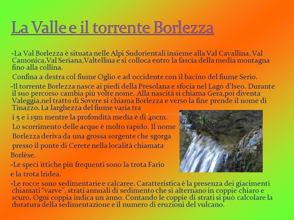 -La Val Borlezza è situata nelle Alpi Sudorientali insieme alla Val Cavallina, Val Camonica,Val Seriana,Valtellina e si colloca entro la fascia della