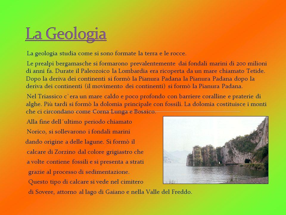 La geologia studia come si sono formate la terra e le rocce. Le prealpi bergamasche si formarono prevalentemente dai fondali marini di 200 milioni di