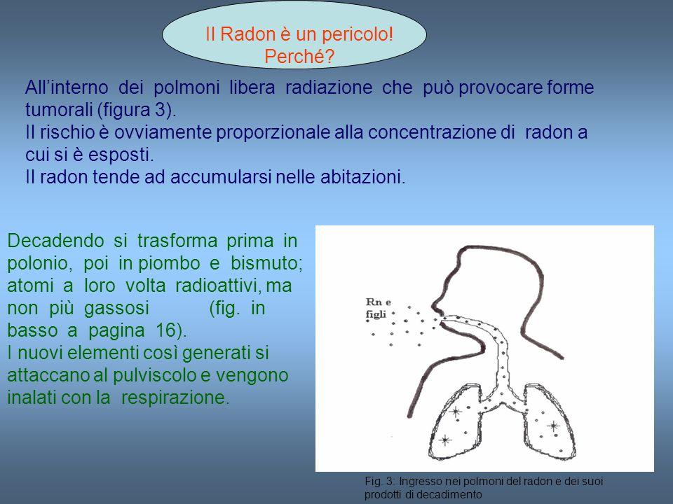 Il Radon è un pericolo! Perché? Allinterno dei polmoni libera radiazione che può provocare forme tumorali (figura 3). Il rischio è ovviamente proporzi