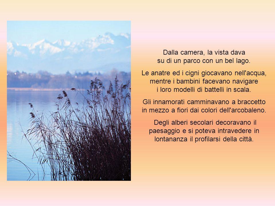 Dalla camera, la vista dava su di un parco con un bel lago. Le anatre ed i cigni giocavano nell'acqua, mentre i bambini facevano navigare i loro model