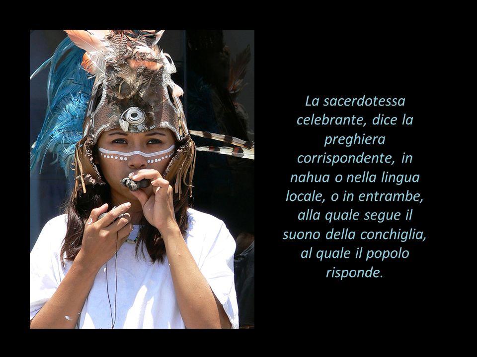 La sacerdotessa celebrante, dice la preghiera corrispondente, in nahua o nella lingua locale, o in entrambe, alla quale segue il suono della conchigli
