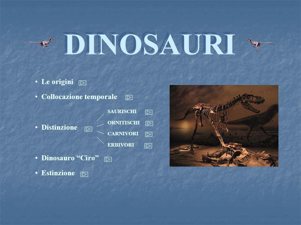 ESTINZIONE BACK Alla fine dellEra Mesozoica, circa 65 milioni di anni fa, tutti i dinosauri, dopo aver dominato la Terra ben 170 milioni di anni, scompaiono improvvisamente.
