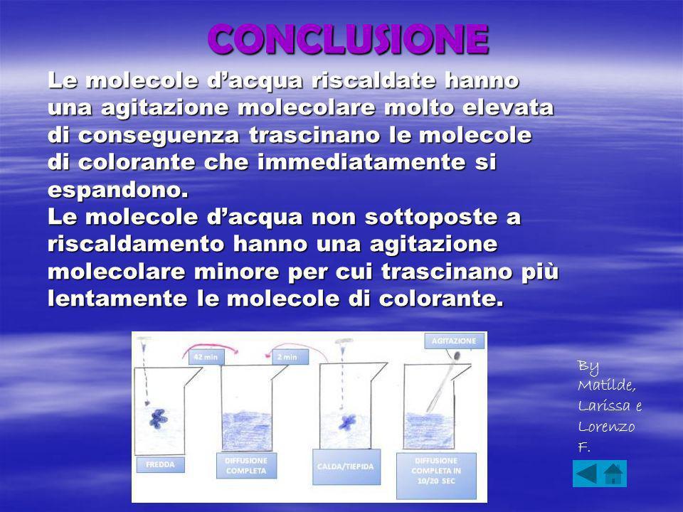 CONCLUSIONE Le molecole dacqua riscaldate hanno una agitazione molecolare molto elevata di conseguenza trascinano le molecole di colorante che immediatamente si espandono.