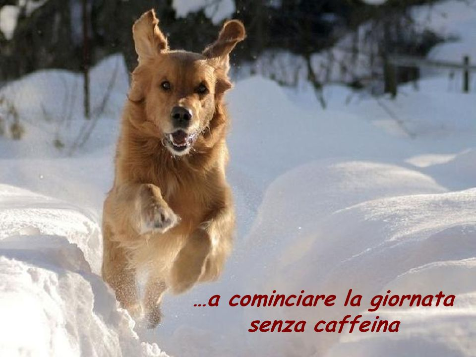 …a cominciare la giornata senza caffeina