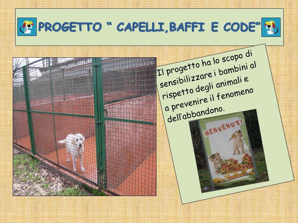 Il progetto ha lo scopo di sensibilizzare i bambini al rispetto degli animali e a prevenire il fenomeno dellabbandono.