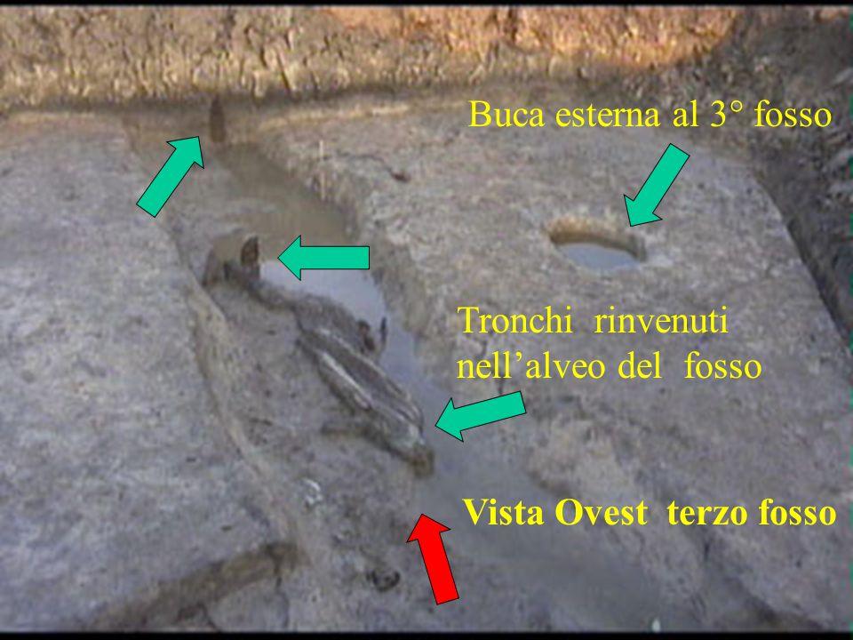 Vista Ovest terzo fosso Tronchi rinvenuti nellalveo del fosso Buca esterna al 3° fosso