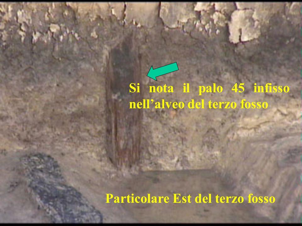 Particolare Est del terzo fosso Si nota il palo 45 infisso nellalveo del terzo fosso