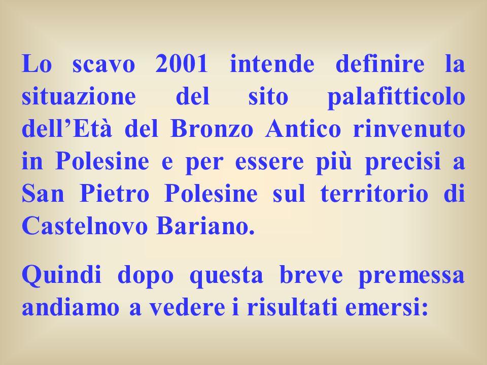Lo scavo 2001 intende definire la situazione del sito palafitticolo dellEtà del Bronzo Antico rinvenuto in Polesine e per essere più precisi a San Pie