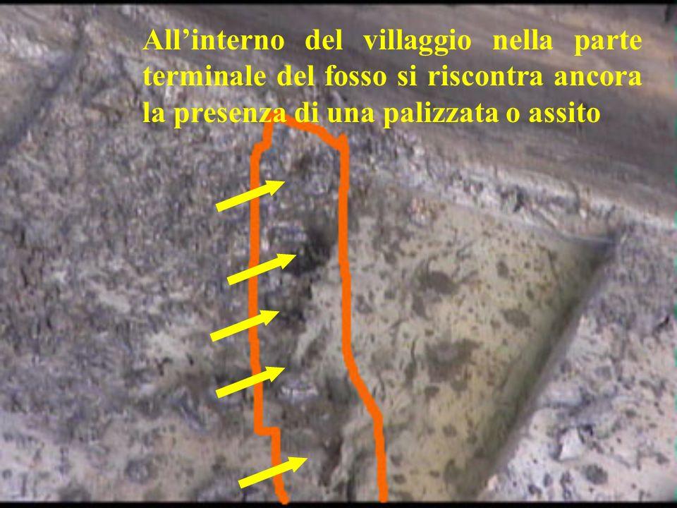 Allinterno del villaggio nella parte terminale del fosso si riscontra ancora la presenza di una palizzata o assito