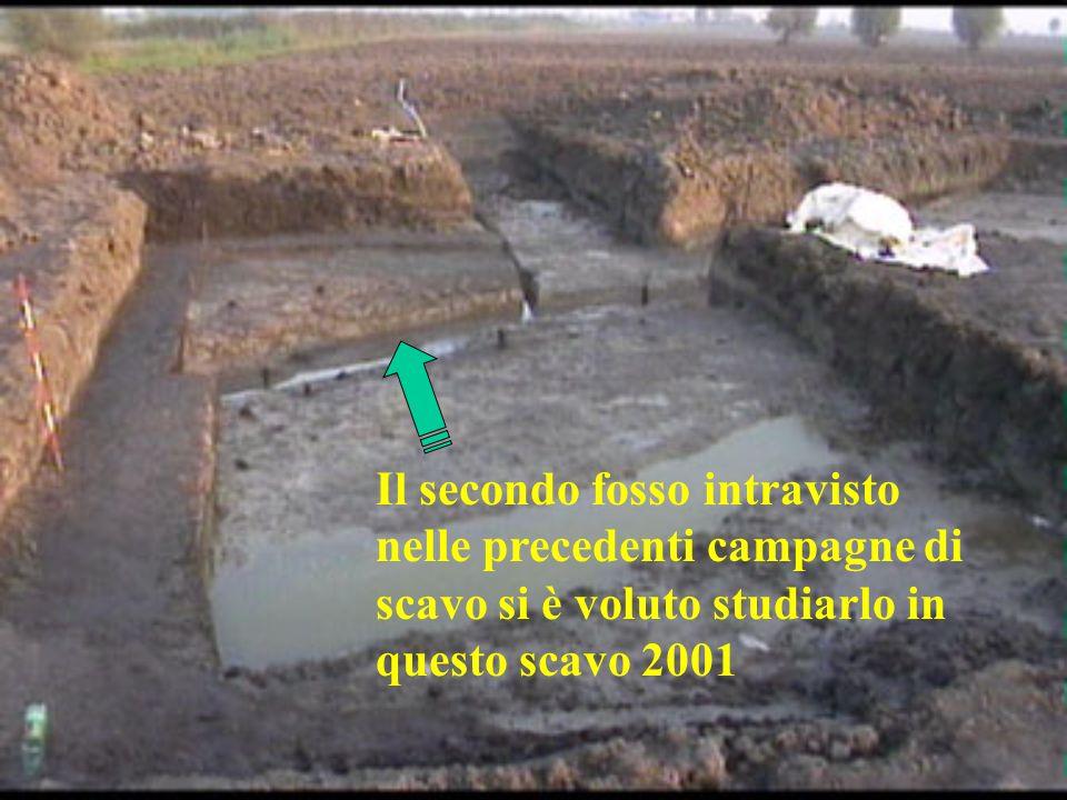 Il secondo fosso intravisto nelle precedenti campagne di scavo si è voluto studiarlo in questo scavo 2001