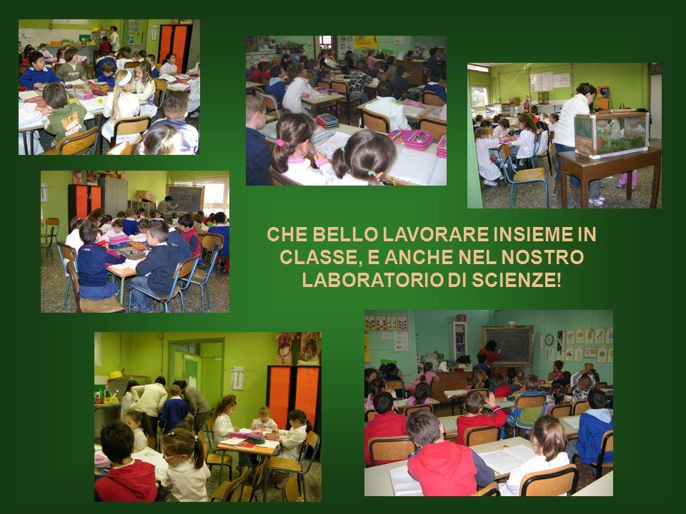 CHE BELLO LAVORARE INSIEME IN CLASSE, E ANCHE NEL NOSTRO LABORATORIO DI SCIENZE!