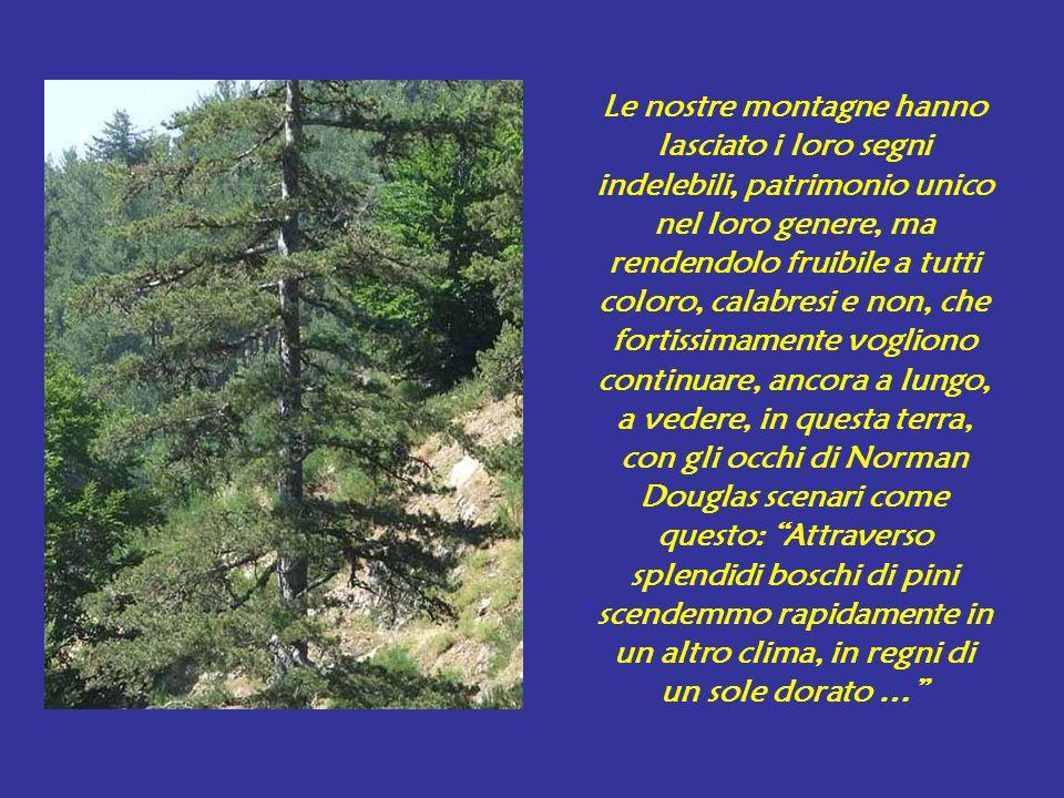 Le nostre montagne hanno lasciato i loro segni indelebili, patrimonio unico nel loro genere, ma rendendolo fruibile a tutti coloro, calabresi e non, c