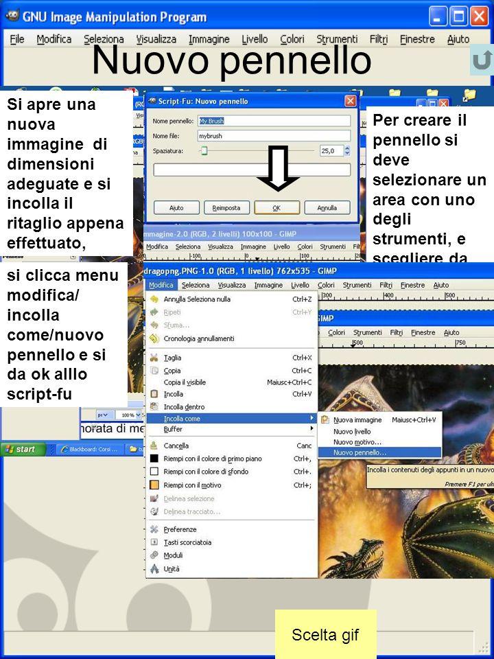 Nuovo pennello Scelta gif Per creare il pennello si deve selezionare un area con uno degli strumenti, e scegliere da menu: modifica copia (la mano) Si