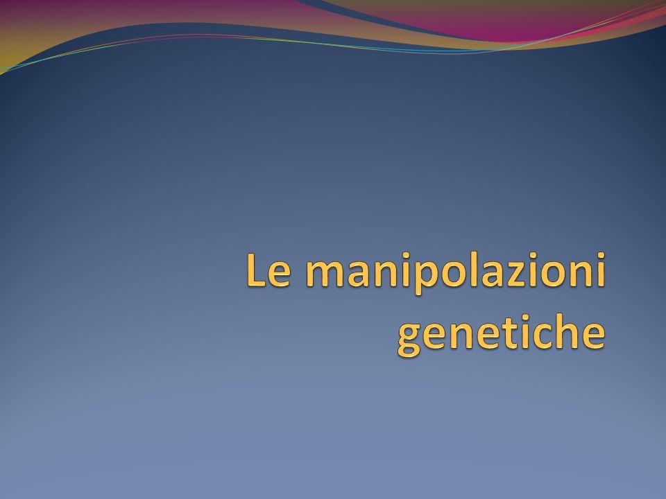 Definizione Con lespressione manipolazioni genetiche si designano quegli interventi sul patrimonio genetico umano (il cosiddetto DNA), volti a modificarne lidentità, dando pertanto luogo a soggetti, in parte o totalmente programmati, frutto di complesse operazioni ricombinatorie.