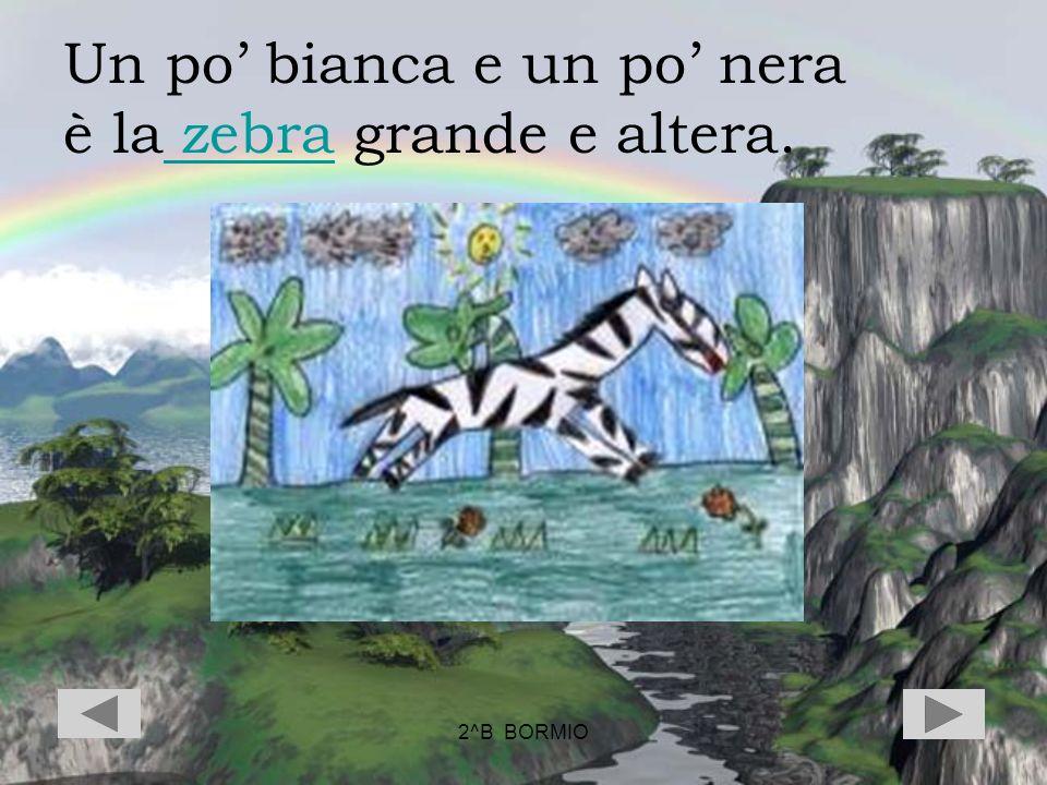 2^B BORMIO Un po bianca e un po nera è la zebra grande e altera. zebra