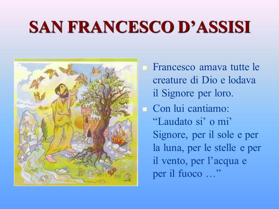SAN FRANCESCO DASSISI Francesco amava tutte le creature di Dio e lodava il Signore per loro.
