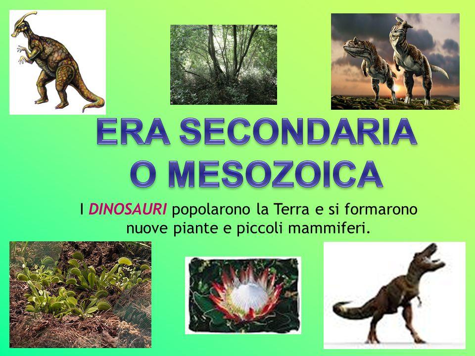 I DINOSAURI popolarono la Terra e si formarono nuove piante e piccoli mammiferi.