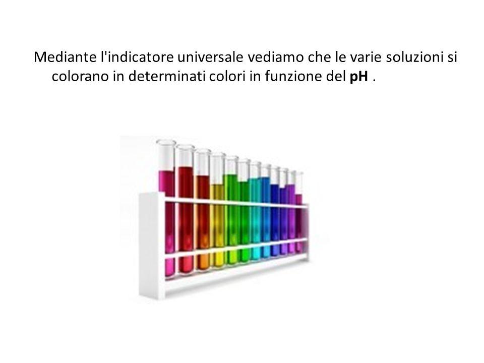 Mediante l'indicatore universale vediamo che le varie soluzioni si colorano in determinati colori in funzione del pH.