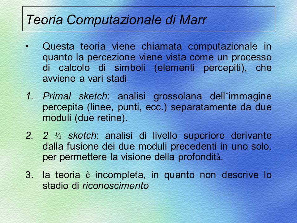 Teoria Computazionale di Marr Questa teoria viene chiamata computazionale in quanto la percezione viene vista come un processo di calcolo di simboli (