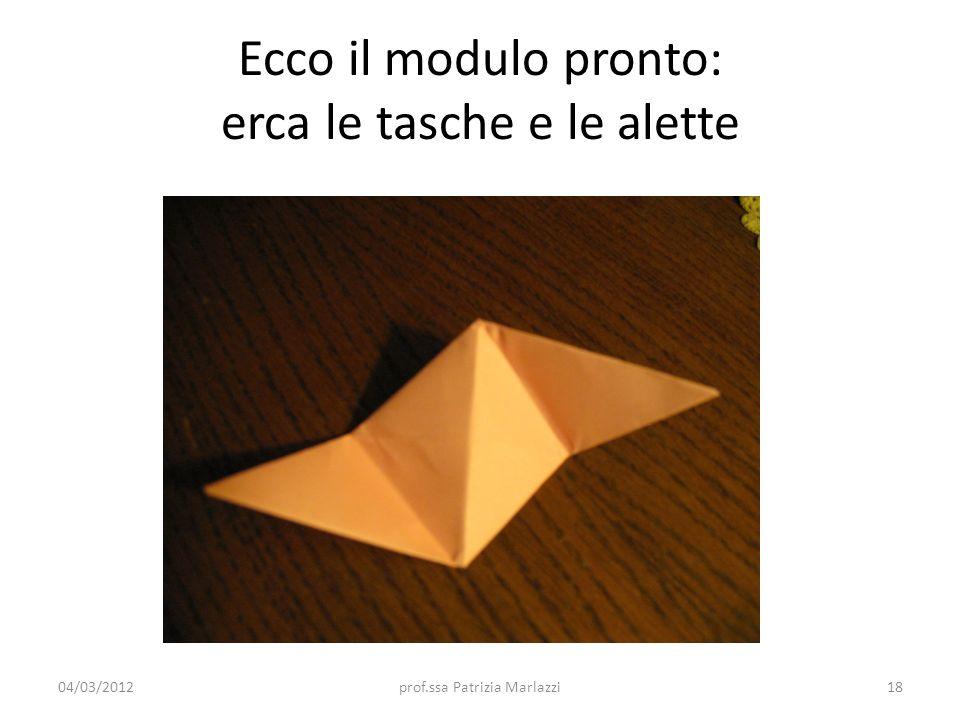 Ecco il modulo pronto: erca le tasche e le alette 04/03/201218prof.ssa Patrizia Marlazzi