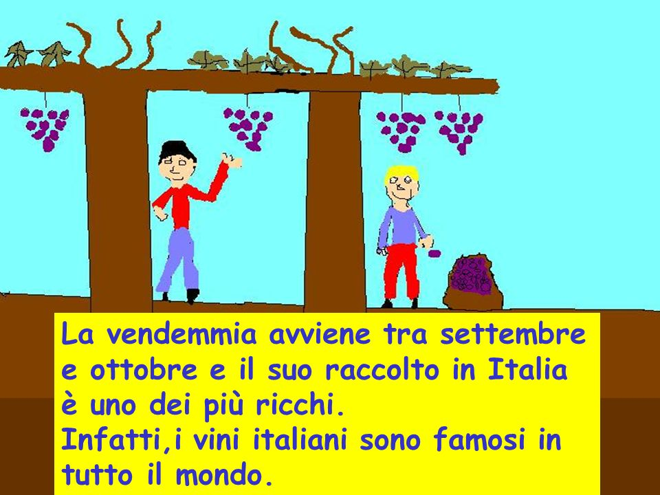 In Italia ci sono molte varietà di uva. Quelle dellItalia meridionale è molto zuccherina. Invece, quelle dellItalia settentrionale è più acida.