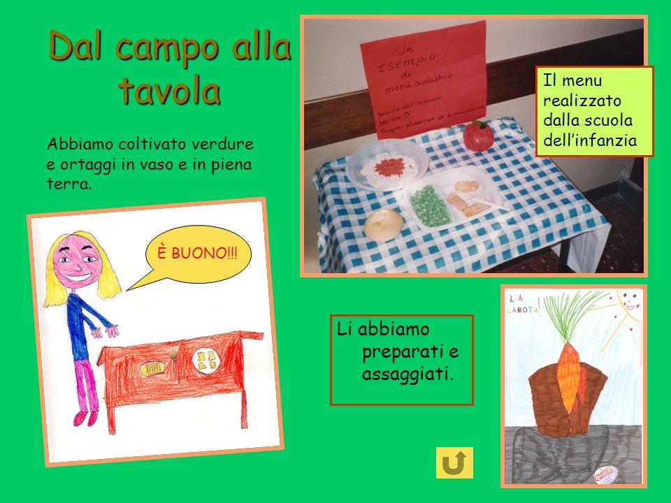 Dal campo alla tavola Li abbiamo preparati e assaggiati. Il menu realizzato dalla scuola dellinfanzia Abbiamo coltivato verdure e ortaggi in vaso e in